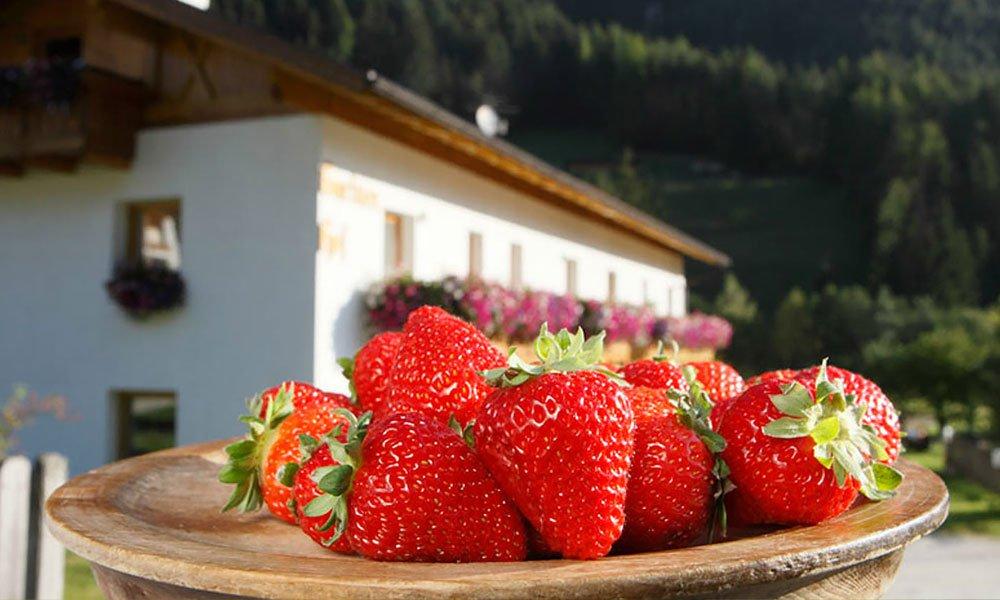 """Prodotti freschi e genuini nella """"fattoria delle fragole"""""""